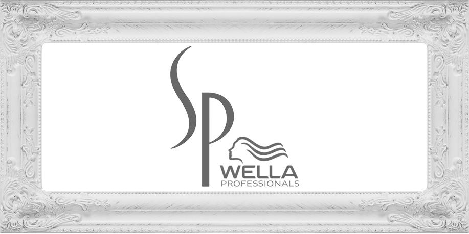 sp-by-wella-cornice